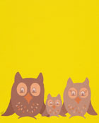 the owl family